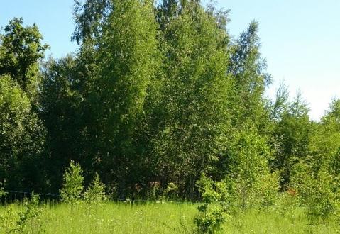 Земельный участок 10 соток в дачном поселке Тульской области . - Фото 3