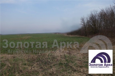 Продажа земельного участка, Северская, Северский район, В границах СПК . - Фото 5
