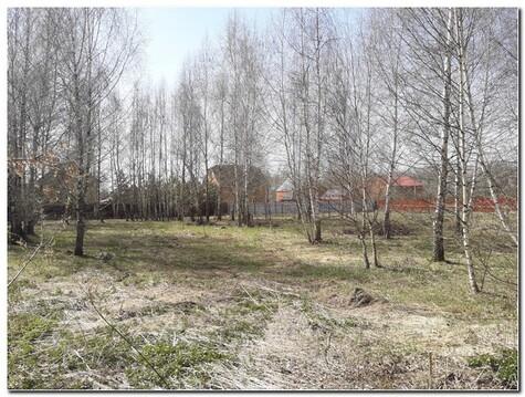 Красивый участок 15 соток в тихой и уютной деревне Горчаково - Фото 2