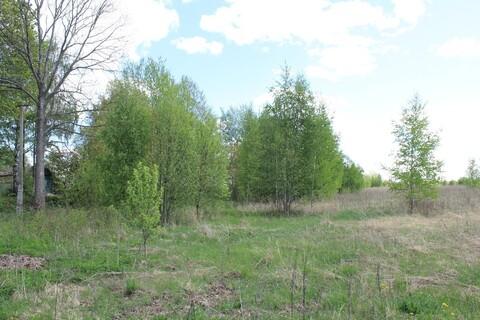 Участок в деревне Гдовского района - Фото 3