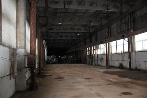 Сдам производственно-складское помещение 800 м2 H-9 м - Фото 3