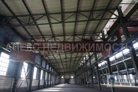 Аренда помещения пл. 4700 м2 под склад, производство, , офис и склад, . - Фото 5