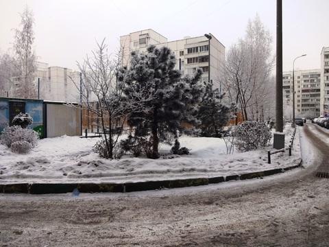 4 ком. квартира м. Братиславская ул. Поречная д.31 к 1 - Фото 3