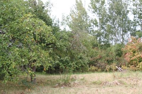 Предложение чудесное, участок для постройки дачи, лес и река Протва. - Фото 3