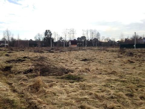 Земельный участок в Красном Бору - Фото 4