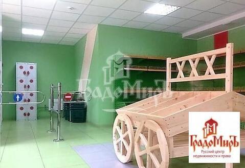Продается коммерческое помещение, г. Пушкино, Набережная - Фото 4