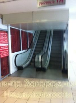 Магазин, торговая площадь, Авиамоторная Площадь Ильича Римская, 900 . - Фото 4