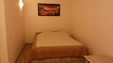 1-комнатная квартира, г .Дмитров, ул. Сиреневая, д 3 - Фото 3