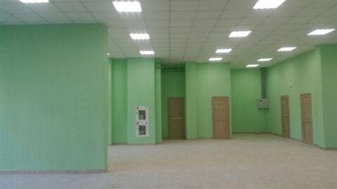 Сдам торговое помещение 220 кв.м, м. Новочеркасская - Фото 2