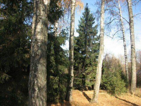 Участок 18 сот. г. Королёв мкр-н Первомайский 15 км. от МКАД - Фото 1
