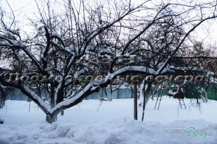 Ярославское ш. 10 км от МКАД, Королев, Коттедж 440 кв. м - Фото 3