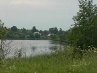 Продается полуостров 41 га, на реке Медведица - Фото 1