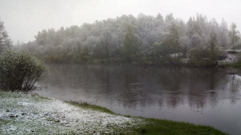 Участок 15 соток, ИЖС в д. Ясная поляна(Соколья гора) - Фото 5