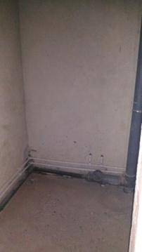 3-к квартира в Степном в новом доме - Фото 5