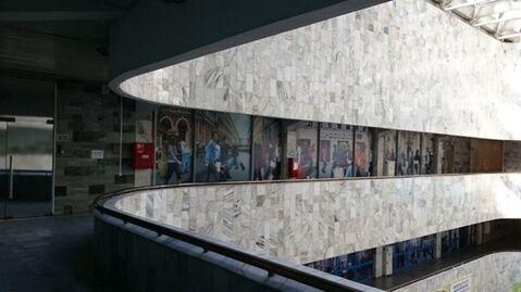 Сдам офисное помещение 216 кв.м, м. Василеостровская - Фото 3