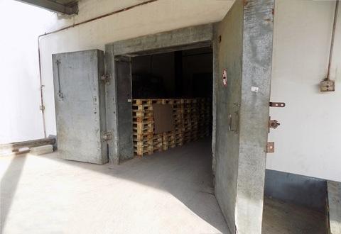 Сдается склад холодильник в Центральном районе - Фото 2