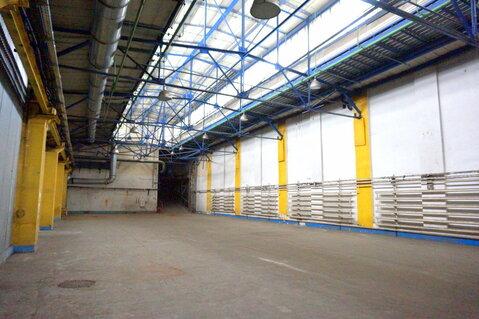 Климовск сдаю для производства 1200 м2 - Фото 3