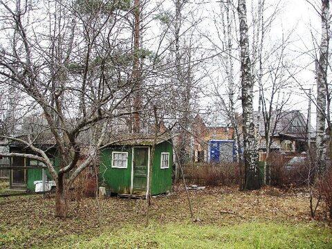 Лесной участок 17соток в пос. Загорянский, Ярославское ш. 14км от МКАД - Фото 3