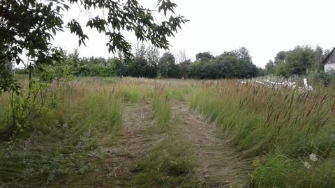 Срочно продается земельный участок в с.Сошки Грязинского района - Фото 3