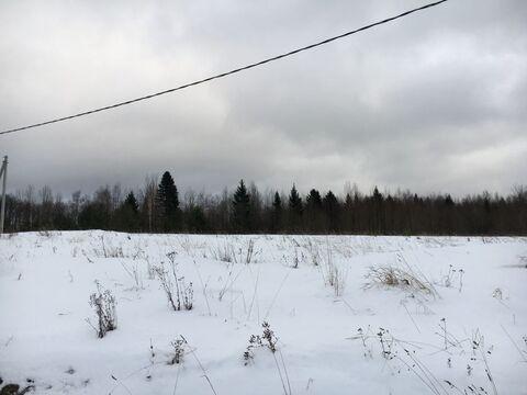 Участок 20соток рядом с лесом в кп Еловый бор 3 - Фото 2