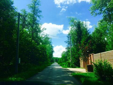 Продаю участок. 20 соток леса. кп Ковчег - Фото 4