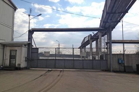 Складские помещения, Щелковское ш, 20 км от МКАД, Щелково, Щелково, . - Фото 4
