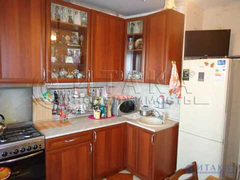 Аренда квартиры, Мурино, Всеволожский район, Шоссе в Лаврики ул - Фото 2