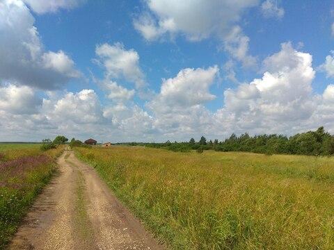 Участок 15 сот. в 8 км. от Гатчины, тихое место. - Фото 1