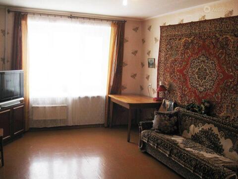 собираетесь порыбачить кцпить квартиру в чите неделя Санкт-Петербурге