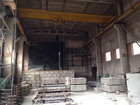 Продам производственное помещение 18000 кв.м, м. Парнас - Фото 3