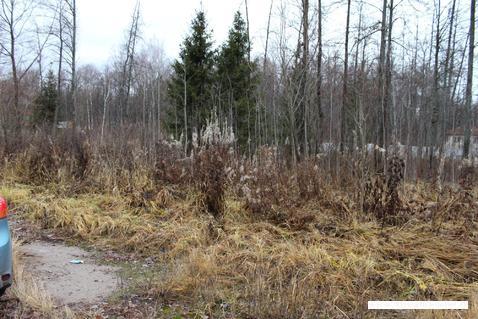 Продажа земельного участка в ДНП Ковчег - Фото 2