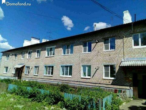 1-к квартира 36м2 с.Елизарово - Фото 1