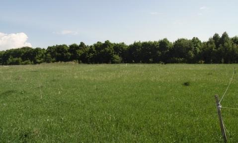 Земельный участок в д.Шмидтово - Фото 1