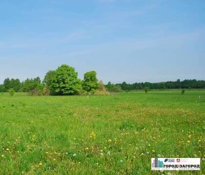 Земельный участок в Богородском районе - Фото 1