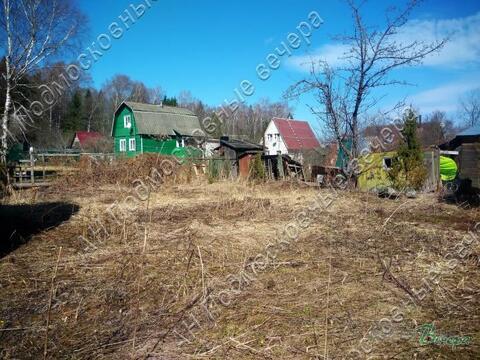 Минское ш. 99 км от МКАД, Блазново, Дача 55 кв. м - Фото 2