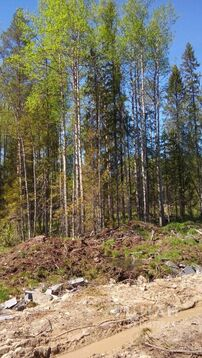 Продажа участка, Петрозаводск, Ул. Роберта Рождественского - Фото 1