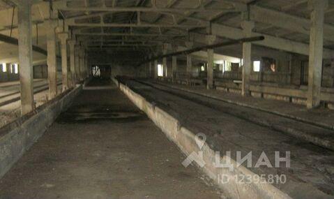 Продажа готового бизнеса, Починковский район - Фото 1