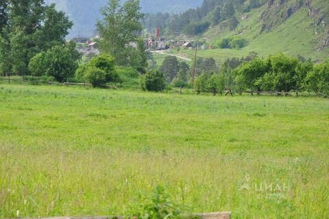 Продажа участка, Анос, Чемальский район - Фото 1