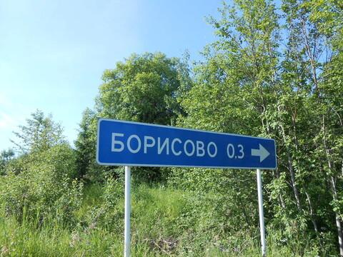 Продажа земельного участка 1,2 га в Валдайском районе, д. Борисово - Фото 1