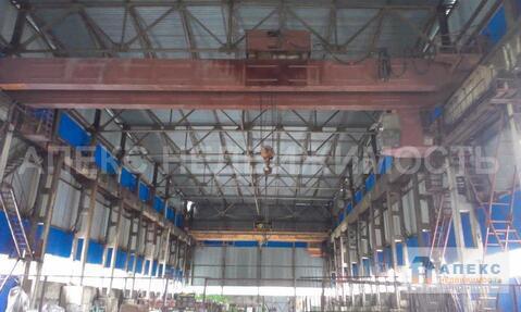 Аренда помещения пл. 2000 м2 под склад, производство, , Серпухов . - Фото 3