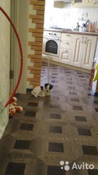 Квартира, ул. Полоненко, д.14 - Фото 1