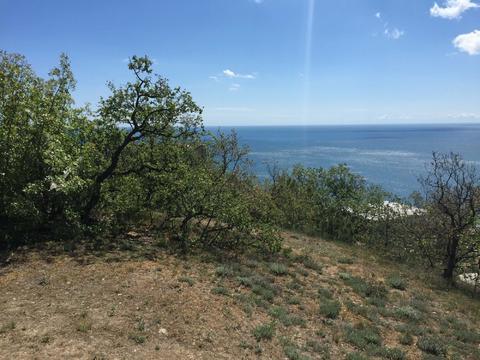 Продам земельный участок в Алуште, Дельфин, до моря 300 м. - Фото 1