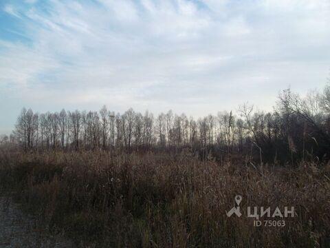 Продажа участка, Барнаул, Правобережный тракт - Фото 2