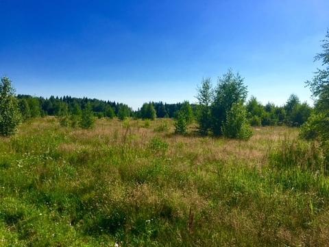 Участок ИЖС. Киевское ш. 1,15млн - Фото 4