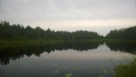 Дом с баней на участке 45 соток, рядом живописное озеро. - Фото 4