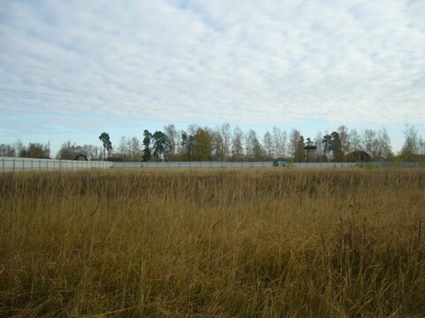 Район д.Юрово и с.Малышево, 45 км от МКАД - Фото 1
