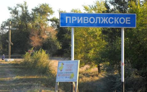 Участок 94 сот. на берегу Волги в с. Приволжское (38 км от Энгельса) - Фото 4