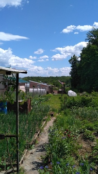 Продаю дом Чебоксары, юзр, по ул.Первомайская, - Фото 2