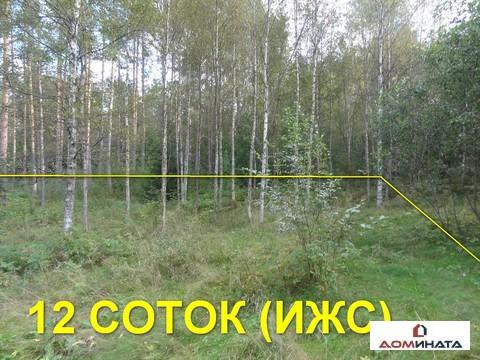 Участок 12 соток в д. Кировское - Фото 2