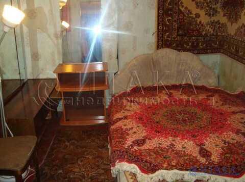 Аренда комнаты, м. Сенная площадь, Ул. Гороховая - Фото 3